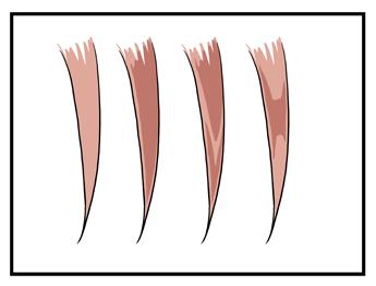 髪の毛の塗り方 髪の陰影の塗り分け方法 漫画イラストの人物